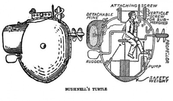 Bushnell's Turtle