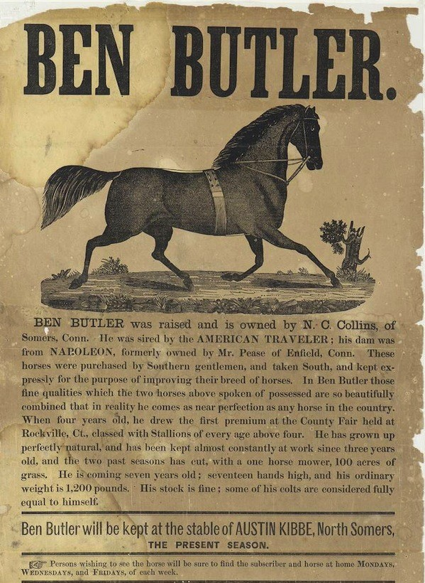 An early broadside advertising the horses of N.C. Collins