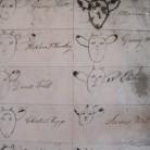 Illustrations showing each farmer's branding earmarks