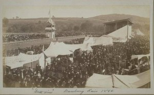 Race track, Danbury Fair, 1884