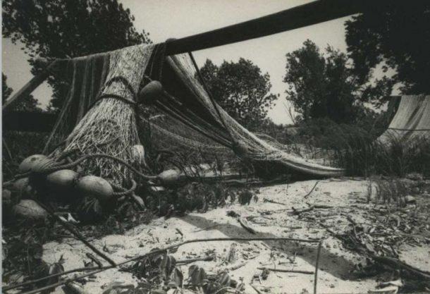 20th-century photograph of shad nets