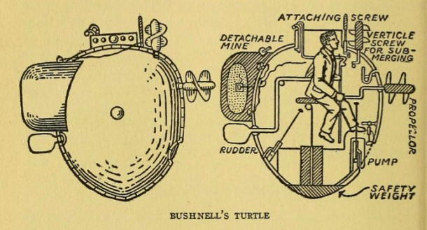 BushnellTurtle