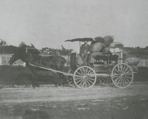 Peddler and cart, ca. 1900