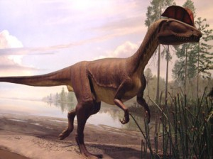 Life-sized model of Dilophosaurus