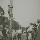 Greased pole, Labor Day picnic, Colt Park, Hartford