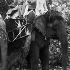 William and Ellen on an elephant, India
