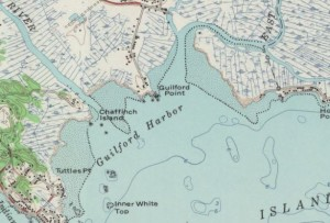 Detail of Chaffinch Island