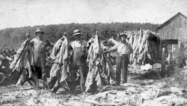 Workers on the Charter farm on Crystal Lake Road, Ellington