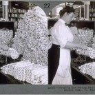Weighing and sorting raw silk skeins, Cheney Brothers Silk Manufacturing Company