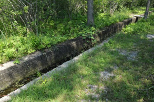This canal supplied water to the pump house, where it was used to wash away ice chips