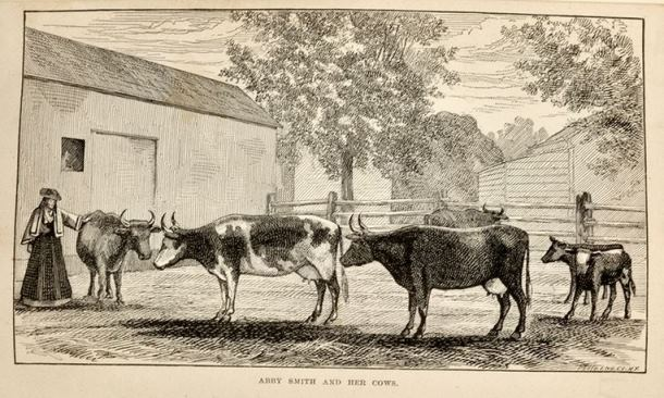 Illustration from Abby Smith and Her Cows by Miss Julia E. Smith, 1877