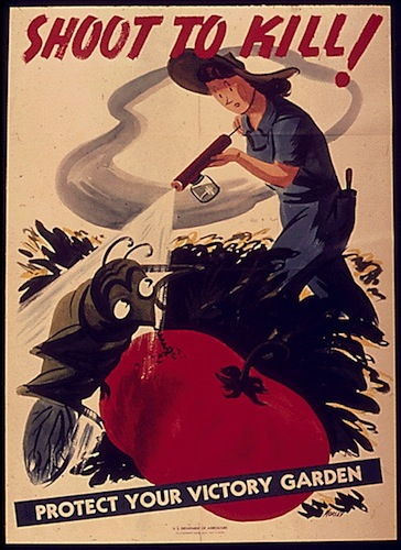 Shoot to Kill! Protect Your Victory Garden - World War II Posters, Office of War Information, National Archives