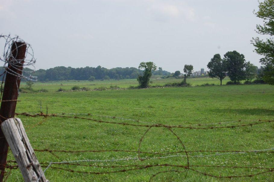 Farmland, Sterling