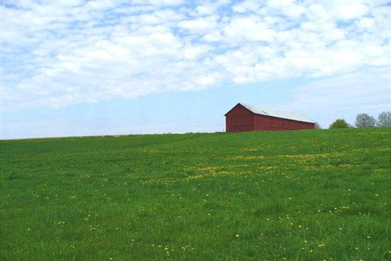 Tobacco Barn, Suffield