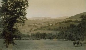 Fields and pastures, Sharon